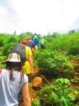 Evangelism in the islands