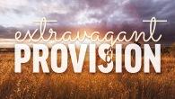 extravagant-provision